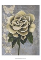 Blissful Gardenia II Fine Art Print