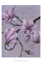 Branches of Magnolia I Fine Art Print
