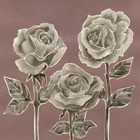 Marsala Roses I Framed Print