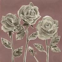 Marsala Roses II Framed Print