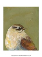 Bird Portrait I Fine Art Print