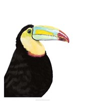 Watercolor Toucan Framed Print