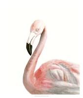 Watercolor Flamingo Fine Art Print