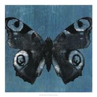 Chambray Butterflies I Framed Print