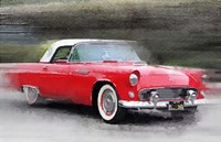 1955 Ford Thunderbird Fine Art Print