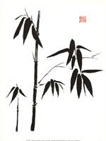 """Bamboo I by Jenny Tsang - 12"""" x 16"""", FulcrumGallery.com brand"""