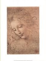 Testa di Faniciulla Detta Fine Art Print