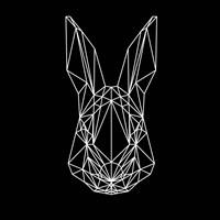 Rabbit on Black Fine Art Print