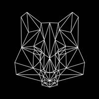 Fox on  Black Fine Art Print