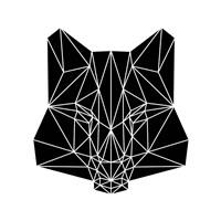 Black Fox Fine Art Print
