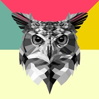 Owl Head Fine Art Print