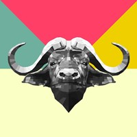 Party Buffalo Fine Art Print