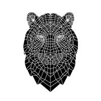 Black Tiger Head Fine Art Print