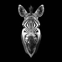 Black Zebra Head Fine Art Print