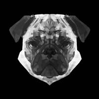 Pug Head Fine Art Print