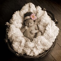 Baby in Basket 2 Fine Art Print