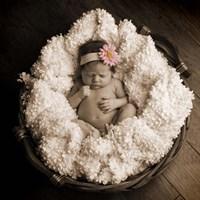 Baby in Basket 2 Fine Art Print