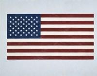 American Flag 2 Fine Art Print