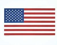 American Flag 1 Fine Art Print