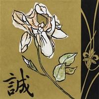 Asian Iris Framed Print