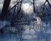 Minnesota Moon Fine Art Print