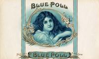 Blue Poll Fine Art Print