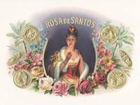 Rosa De Santos Fine Art Print