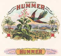Hummer Fine Art Print