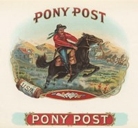 Pony Post Fine Art Print