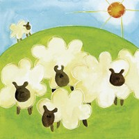 Sheep Fine Art Print