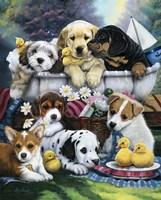 Bath Time Pups Fine Art Print