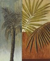 Palm Leaves I Framed Print