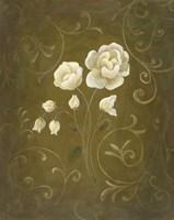 White Flower and Buds II Framed Print