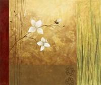 Grass Abstract I Framed Print