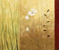 Grass Abstract II Framed Print