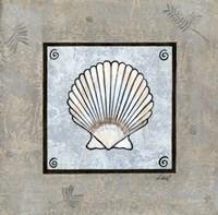 Sea Shell on Blue III Framed Print