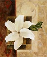 White Delight II Fine Art Print