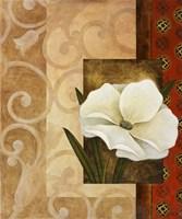 White Delight I Fine Art Print