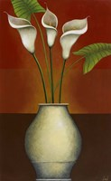 Calla Lily Display II Framed Print