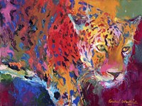 Leopard 1 Fine Art Print