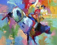 Bull Riding Fine Art Print