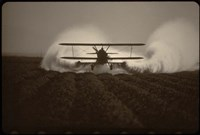 Crop Duster I Fine Art Print
