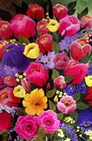 Pink Spring Flowers Fine Art Print