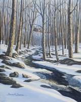 Woodland Farm Stream Fine Art Print