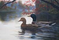 Autumn Cruise Fine Art Print