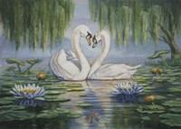 Swan Love Fine Art Print