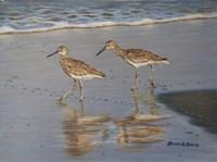 Shore Walkers Fine Art Print