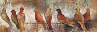 Birds On A Wire Fine Art Print