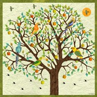 Bird Calls XXIV Fine Art Print