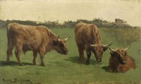 Three Studies of Reddish-Haired Cows on a Meadow Fine Art Print